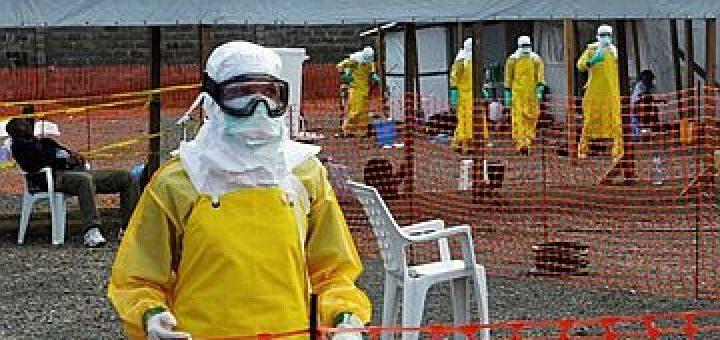 Жители гвинейской деревни убили 8 человек