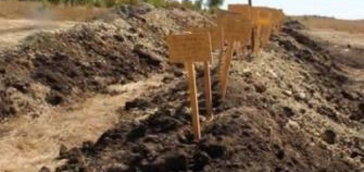 Захоронения под Донецком