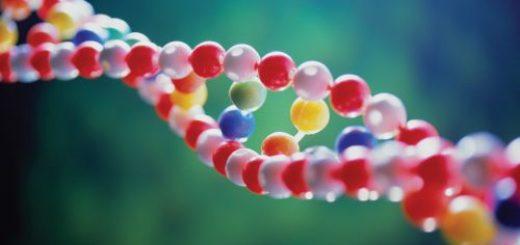 Молекулы ДНК могут использоваться для надежного хранения данных