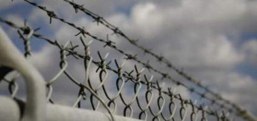 заключенных расстреливают
