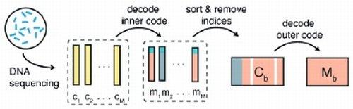 считываниe генетической информации