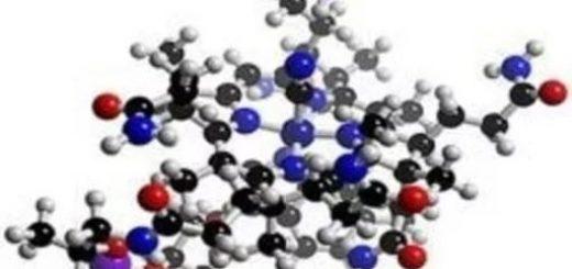 Аминокислоты помогают продлить жизнь